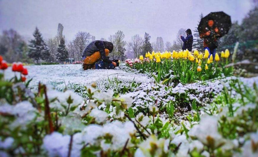 Захваченный  Крым засыпало аномальным снегом: вweb-сети  показали видео