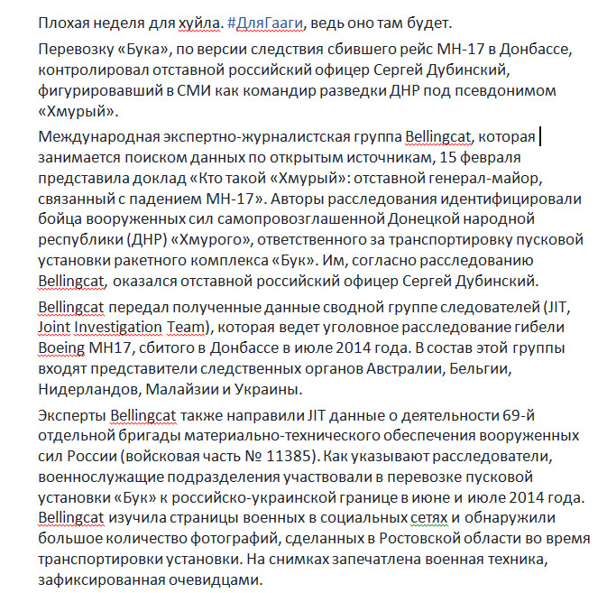 Боевик «Хмурый» ответил наобвинения Bellingcat впричастности к смерти МН17