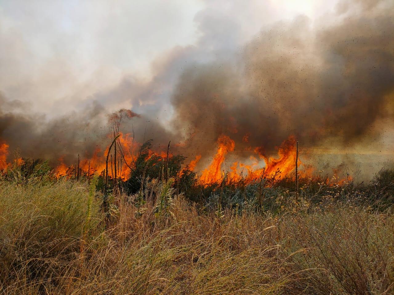 картинки пожару нет рассказал