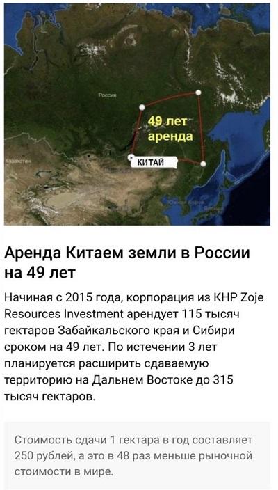 Китай опустошает Сибирь, вырубая лес миллионами тонн в год: россияне бьют тревогу и просят Москву о помощи 1