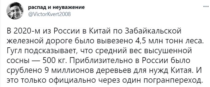 Китай опустошает Сибирь, вырубая лес миллионами тонн в год: россияне бьют тревогу и просят Москву о помощи 3