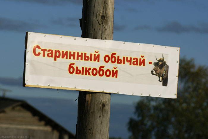 https://www.dialog.ua/images/content/80cbc7a1abf462d635a64460993f3004.jpg