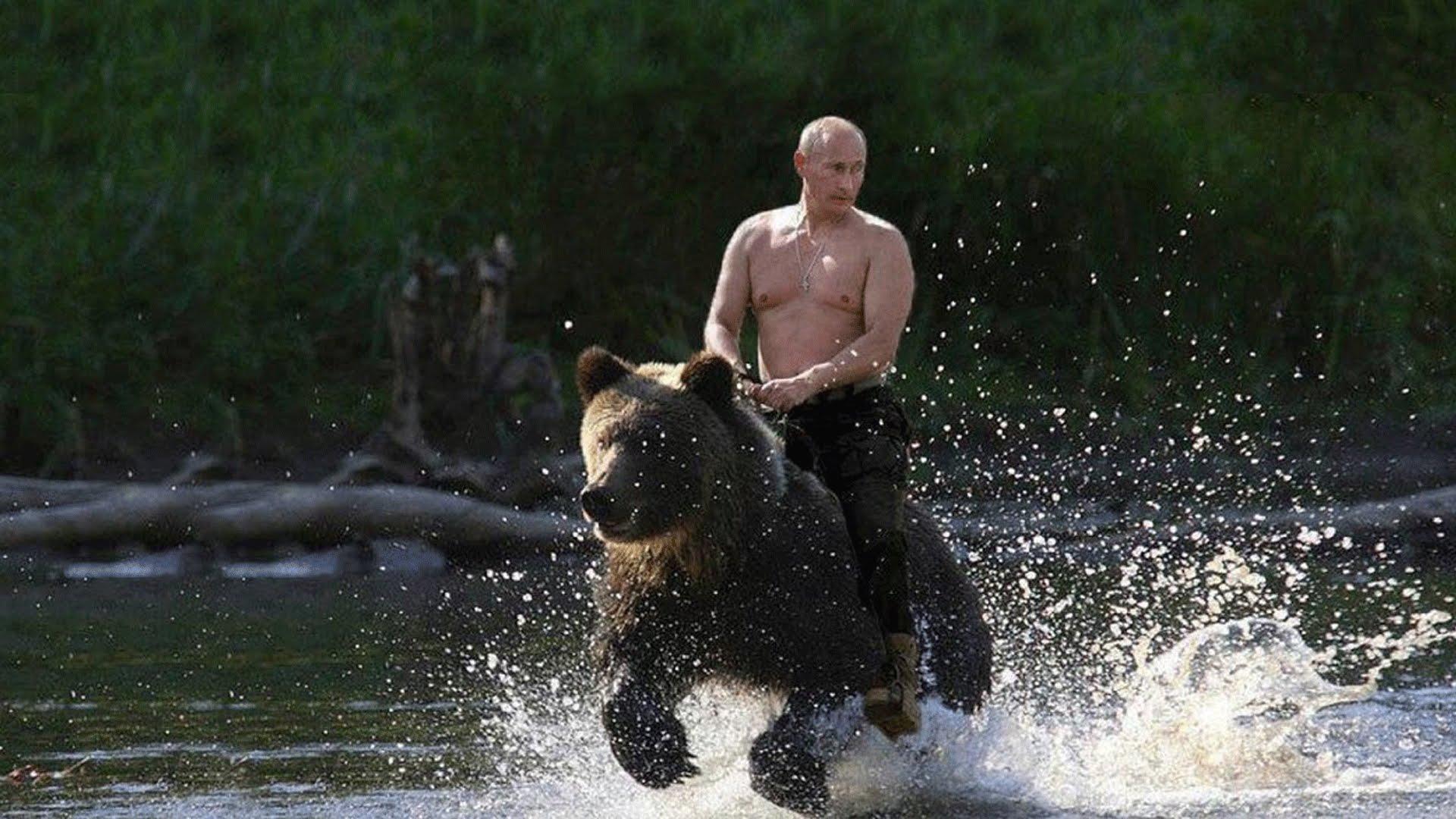 """Результат пошуку зображень за запитом """"путин на медведе"""""""