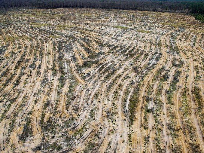 Тепла зима - це результат застосування США кліматичної зброї, - депутат Держдуми РФ Журавльов - Цензор.НЕТ 5422