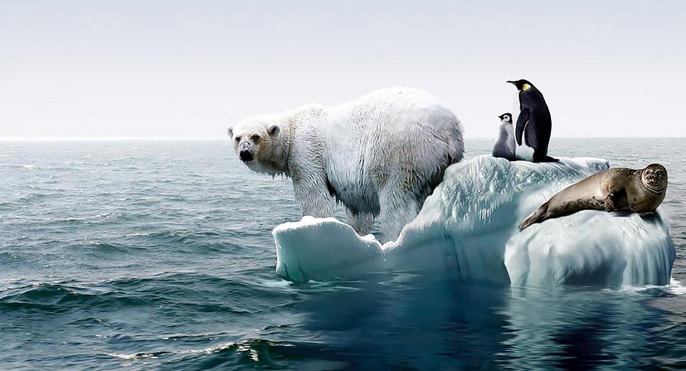 И войны не нужно: климатологи пугают человечество близкими последствиями глобального потепления