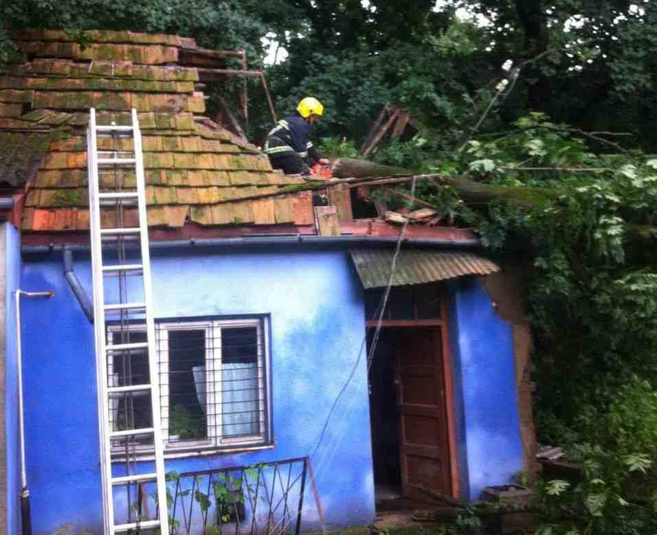 """Мощный ураган на Закарпатье """"изувечил"""" несколько сел: опубликованы кадры"""