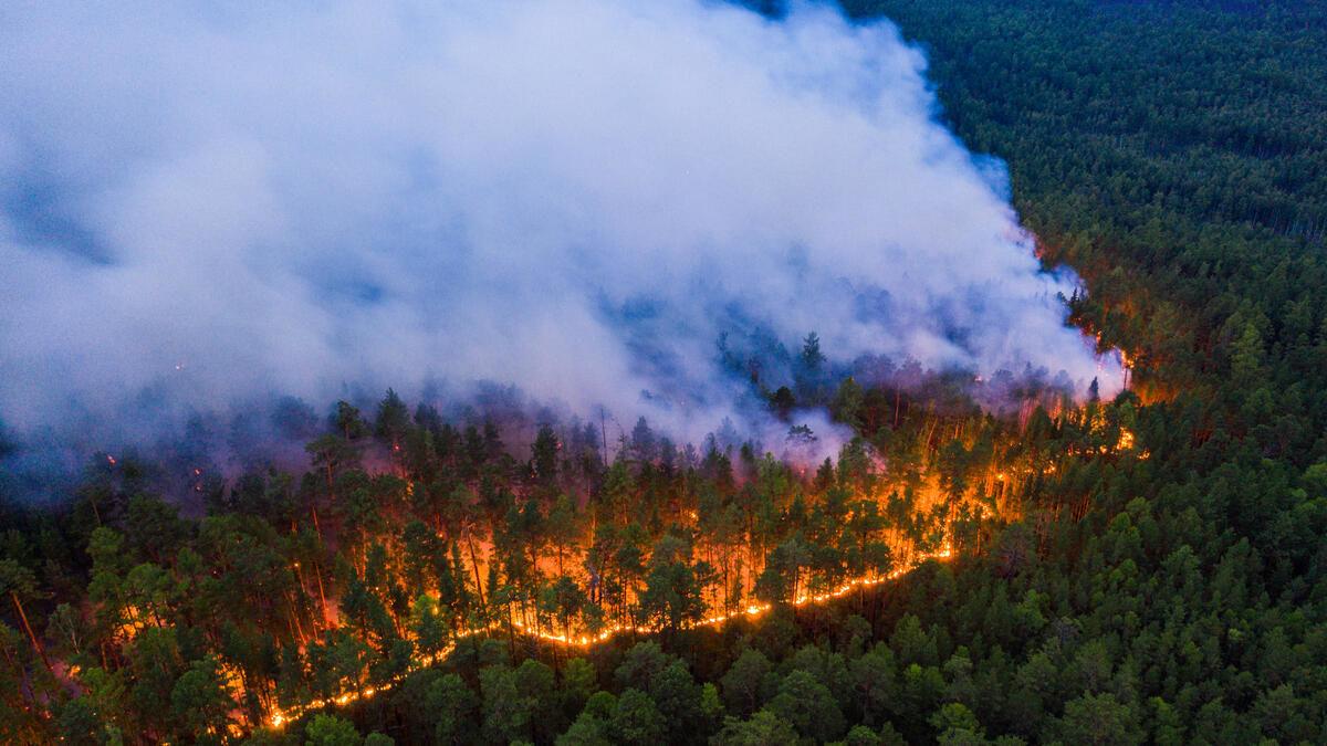 Сибирь в огне: Кремль пытается замолчать экологическую катастрофу