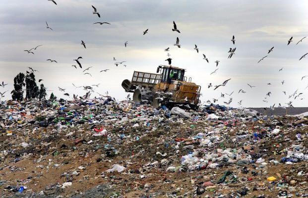 мусор, Львовский мусор, катастрофа, Житомир