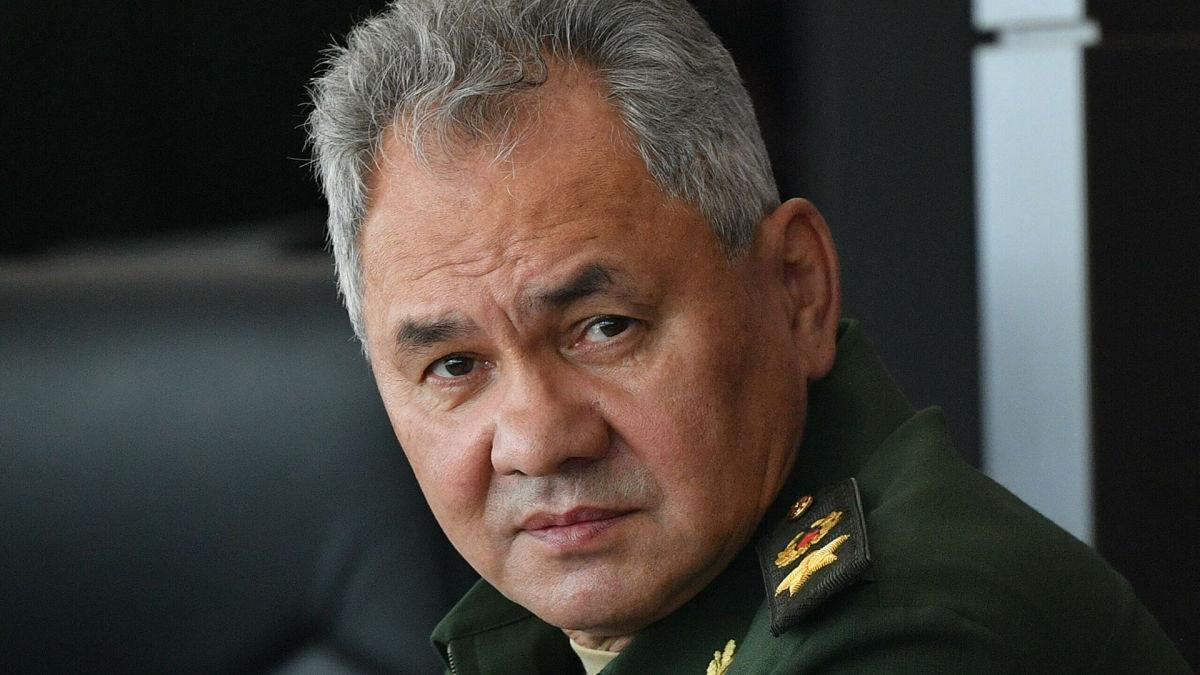 """""""Может, они и Путина уже короновали как царя?"""" - в Сети высмеяли паспорт Шойгу в день выборов"""