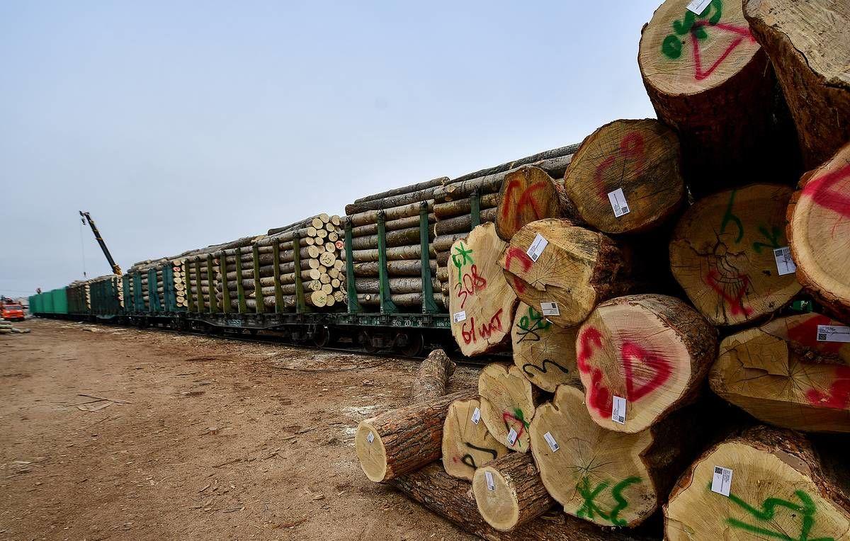 Китай начал торговую блокаду России: российские поезда с лесом и углем разворачивают на границе - СМИ