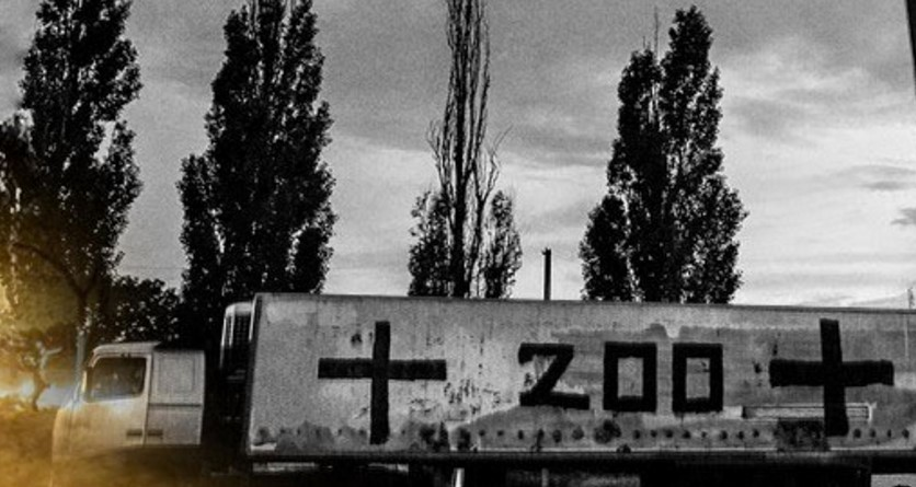 донбасс, ато, восток украины, происшествия, общество, днр, лнр, ликвидированные боевики