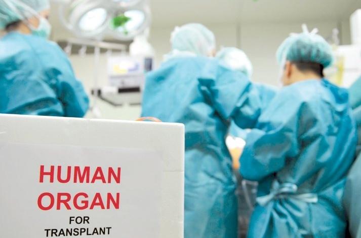 Трансплантация по-новому: Порошенко подписал важный закон