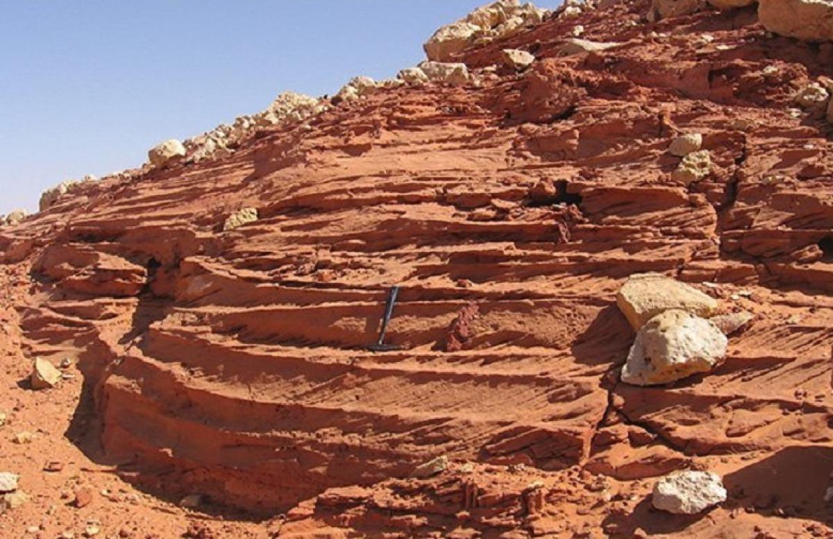 """Ученые раскрыли тайну пустыни Сахара: """"Человек не продержался бы здесь очень долго"""""""