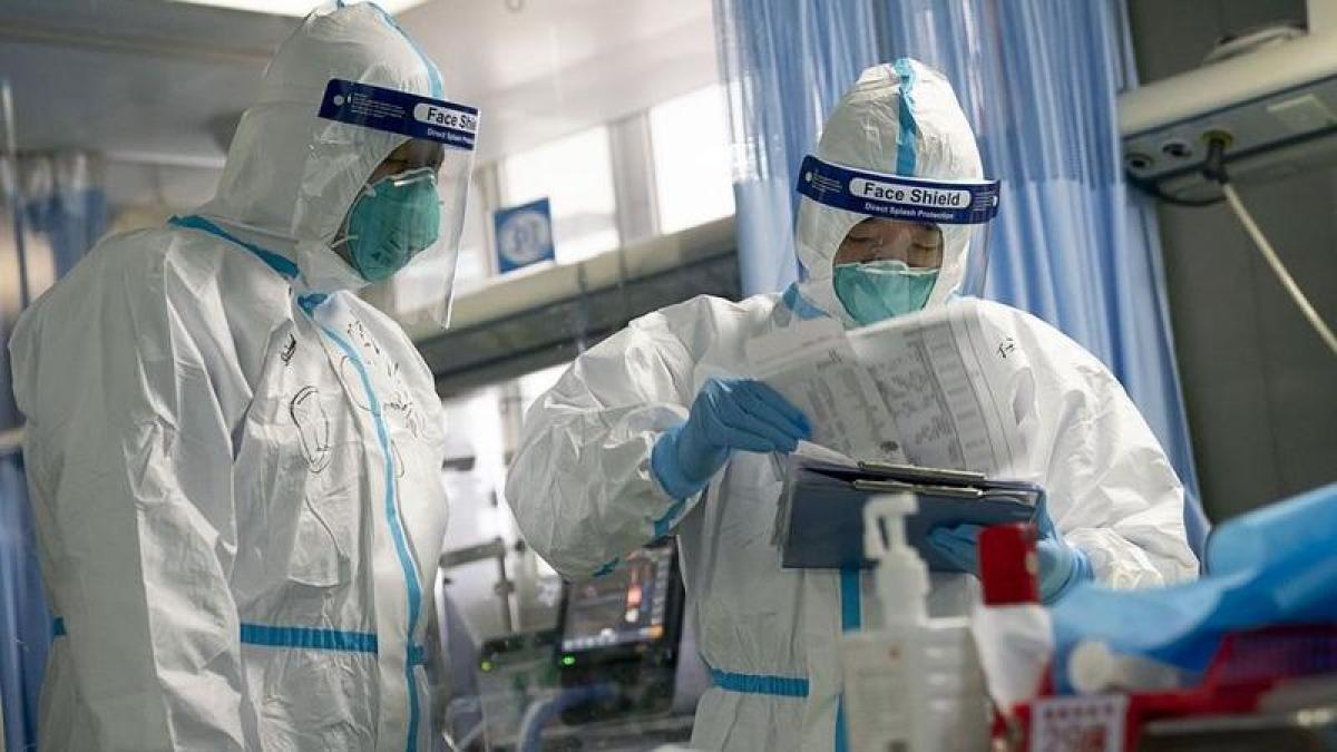 В Китае заявили о вспышке нового вируса, убившего семь человек: что известно