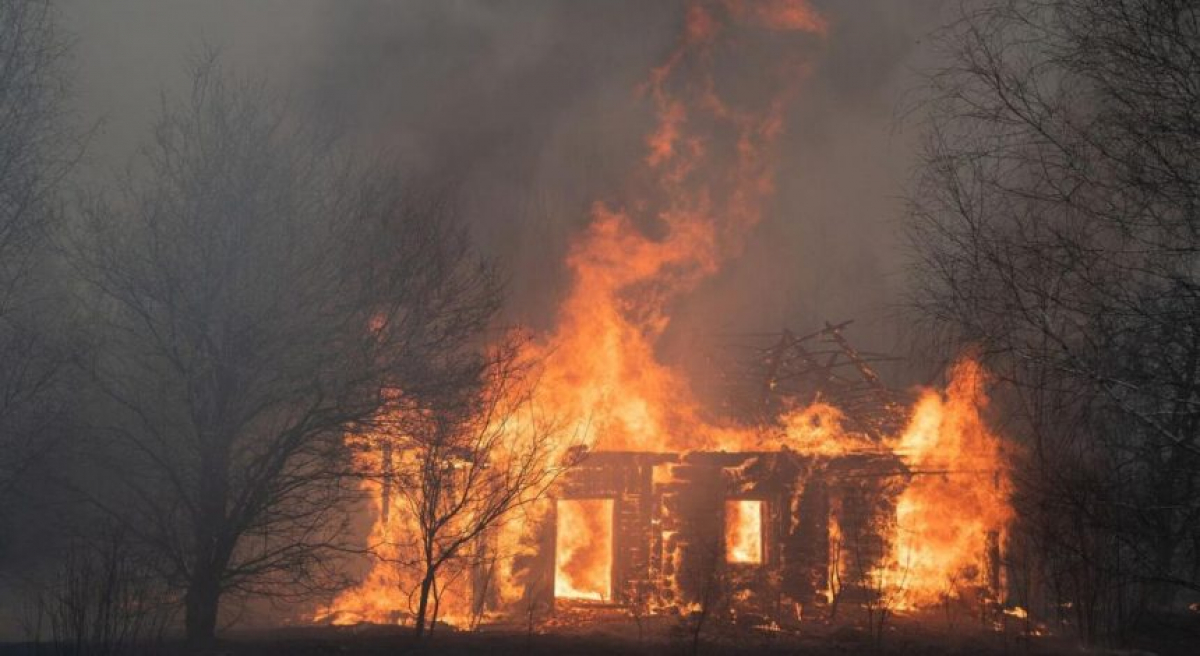 Солнце скрылось в дыму: под Киевом вспыхнул новый лесной пожар, видео