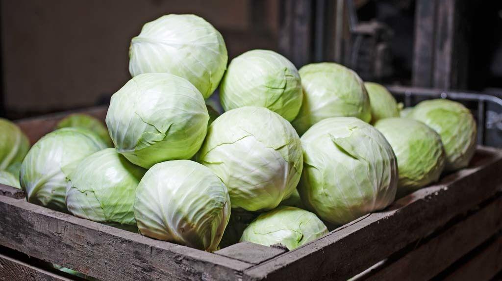 В Украине сразу в 2 раза подорожал популярный овощ: СМИ сообщили новую цену