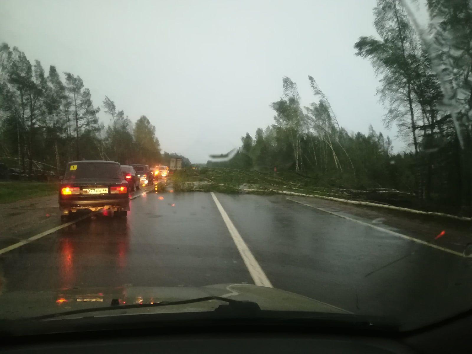 Ураган в Костромской области: пострадали сотни тысяч человек, есть жертвы - власти вводят режим ЧС