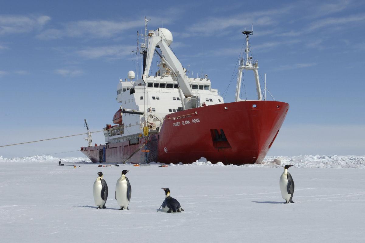 Украина готовится купить у Британии корабль RRS James Clark Ross за $5 млн - умеет крошить 4-метровый лед