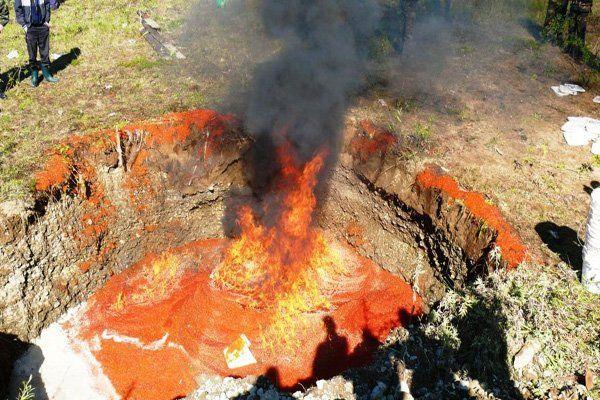 В России сожгли 206 килограммов икры из США, предназначавшейся Украине