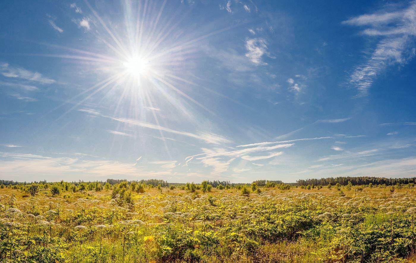 В Украину возвращается лето: в каких областях можно ожидать жаркую погоду