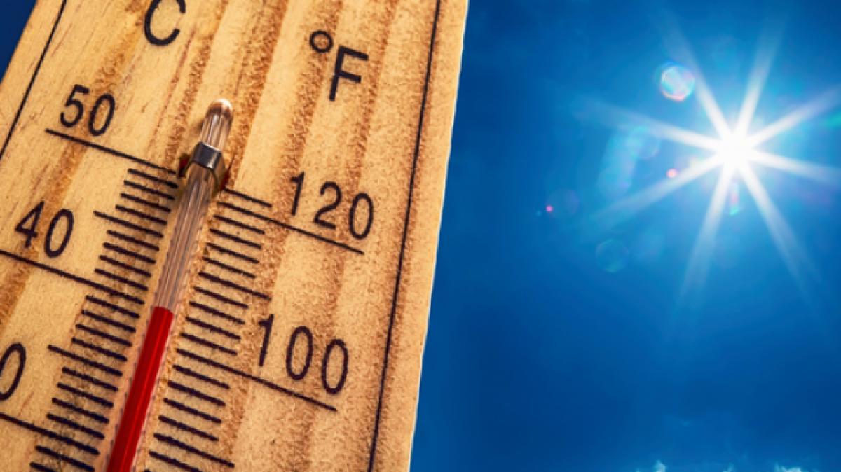 Лето будет аномальным и с катаклизмами: синоптики рассказали, к какой погоде готовиться украинцам