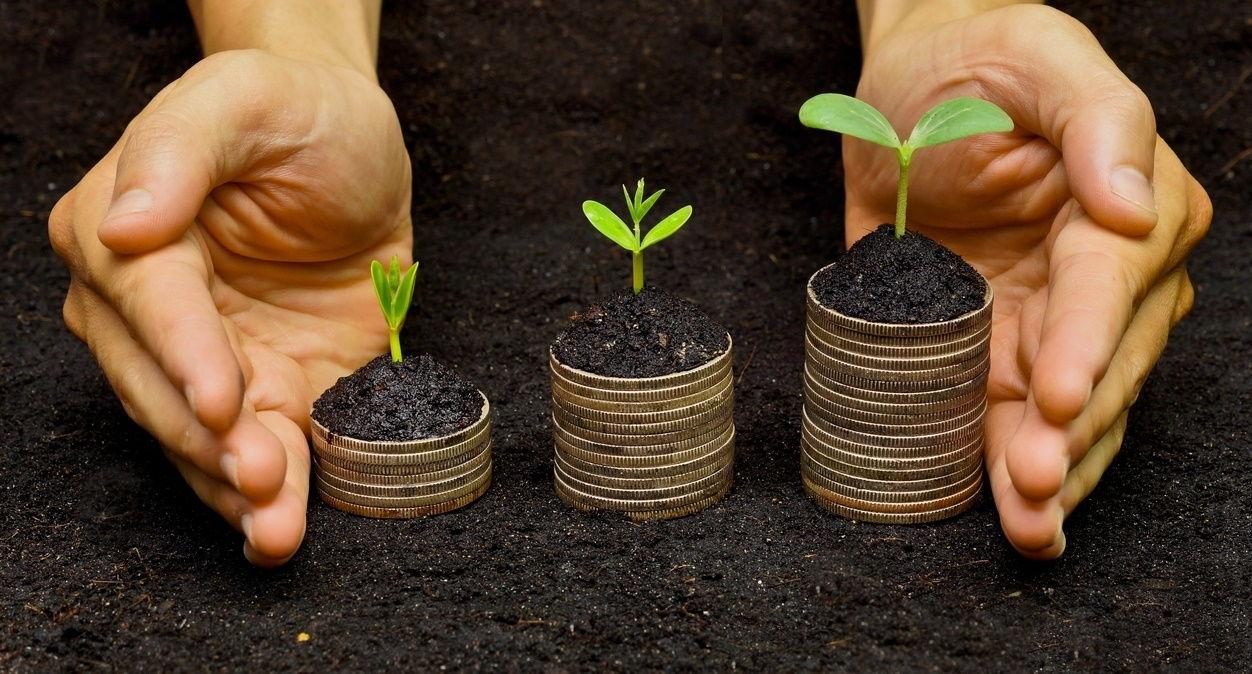 Запуск рынка земли в Украине: Минюст разъяснил процедуру купли-продажи