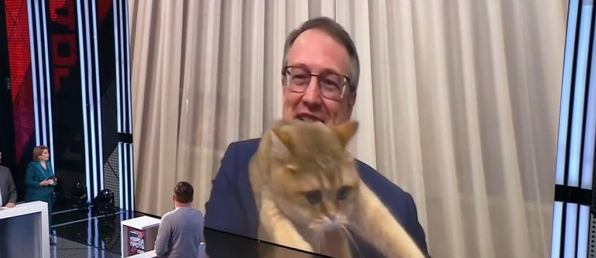 Кошачий хвостик мешает: с Антоном Геращенко случился курьез в прямом эфире
