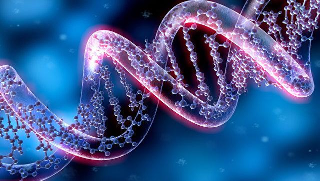 днк, ученые, наука, люди, родители, пара, жизнь, рождение