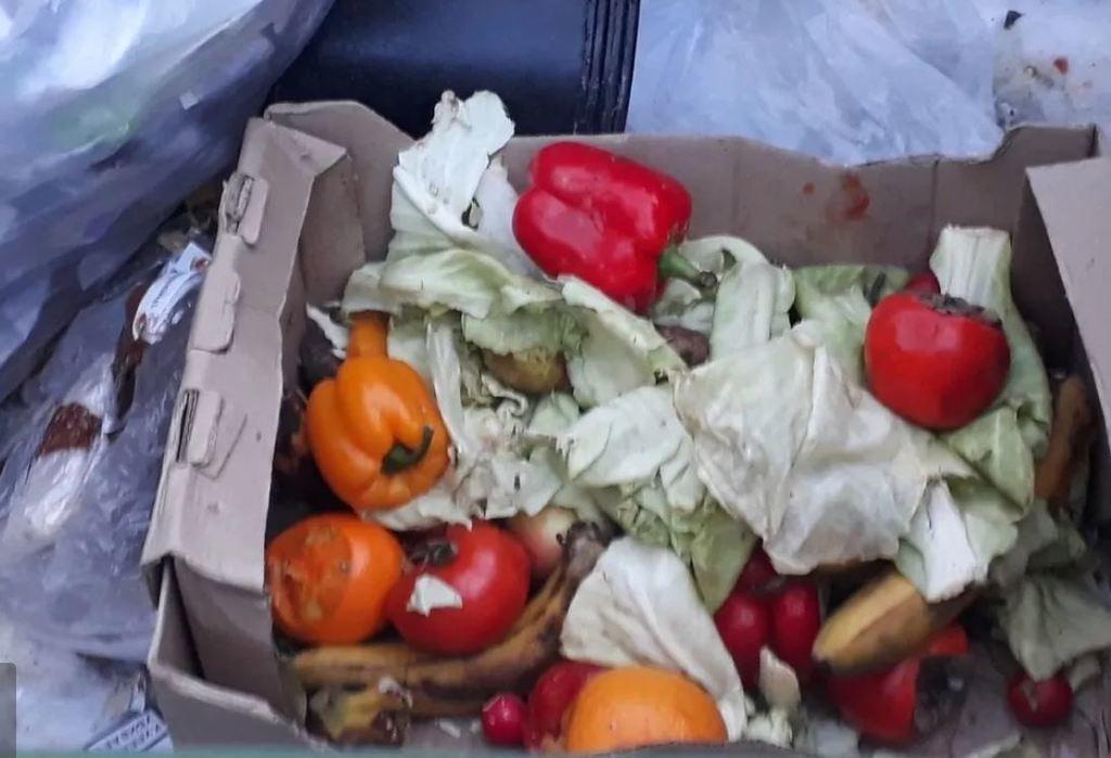 Кадры из России: пенсионеры готовы дежурить у магазина всю ночь, чтобы первыми забрать с помойки просроченную еду