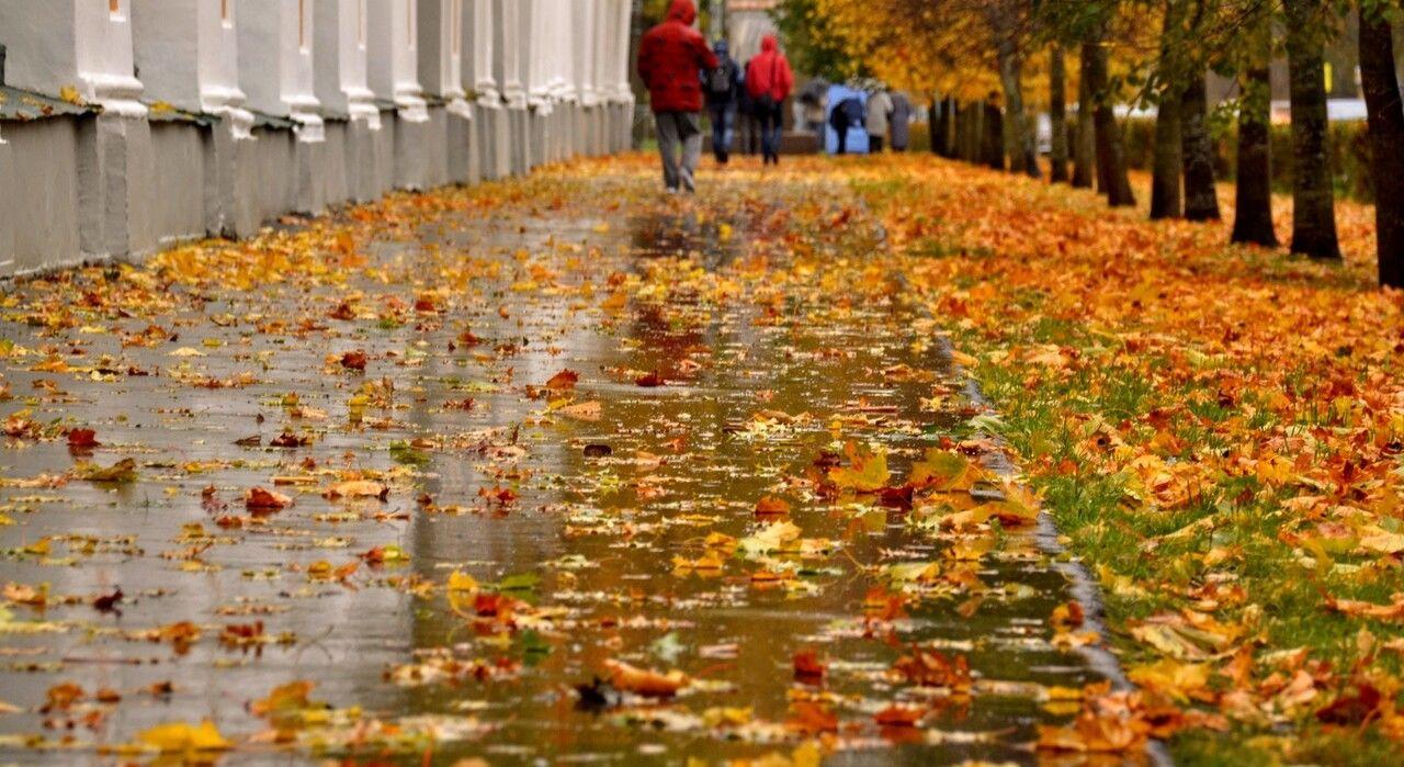 Украинцам советуют наслаждаться последними днями бабьего лета: на страну надвигается похолодание