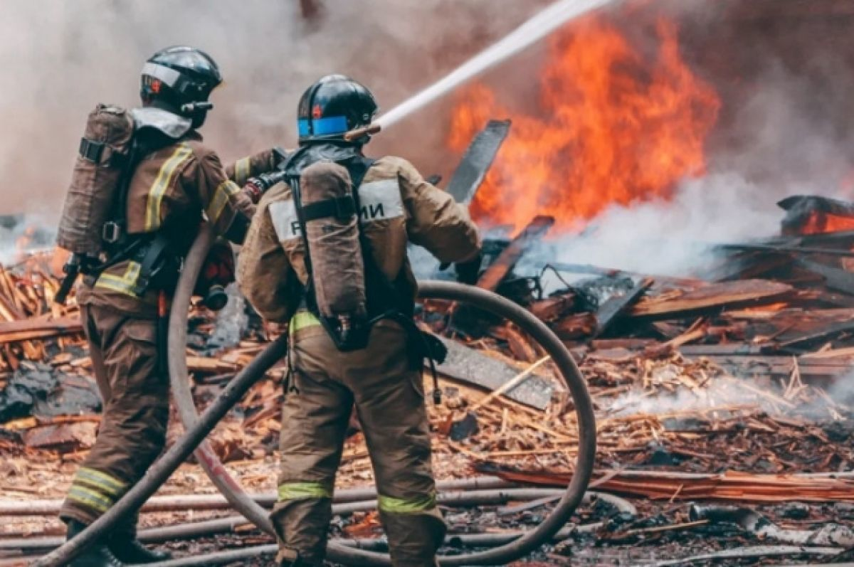 В Карелии ввели режим ЧС из-за масштабных лесных пожаров
