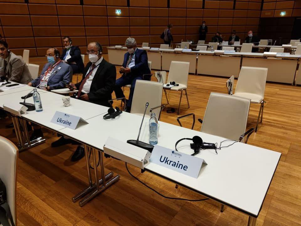 Выступление спикера Совфеда РФ на Всемирной конференции в Вене бойкотировала украинская делегация