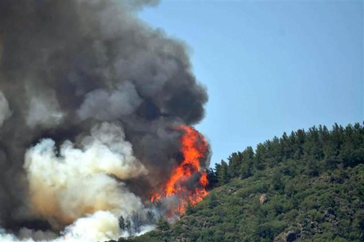 Возле турецкого курортного города Мармарис вспыхнул лесной пожар: огонь перебросился на яхту