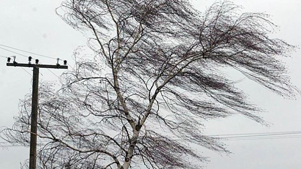 Прогноз в Украине: регионы ждет не только солнечная погода без осадков - синоптики предупредили об опасности