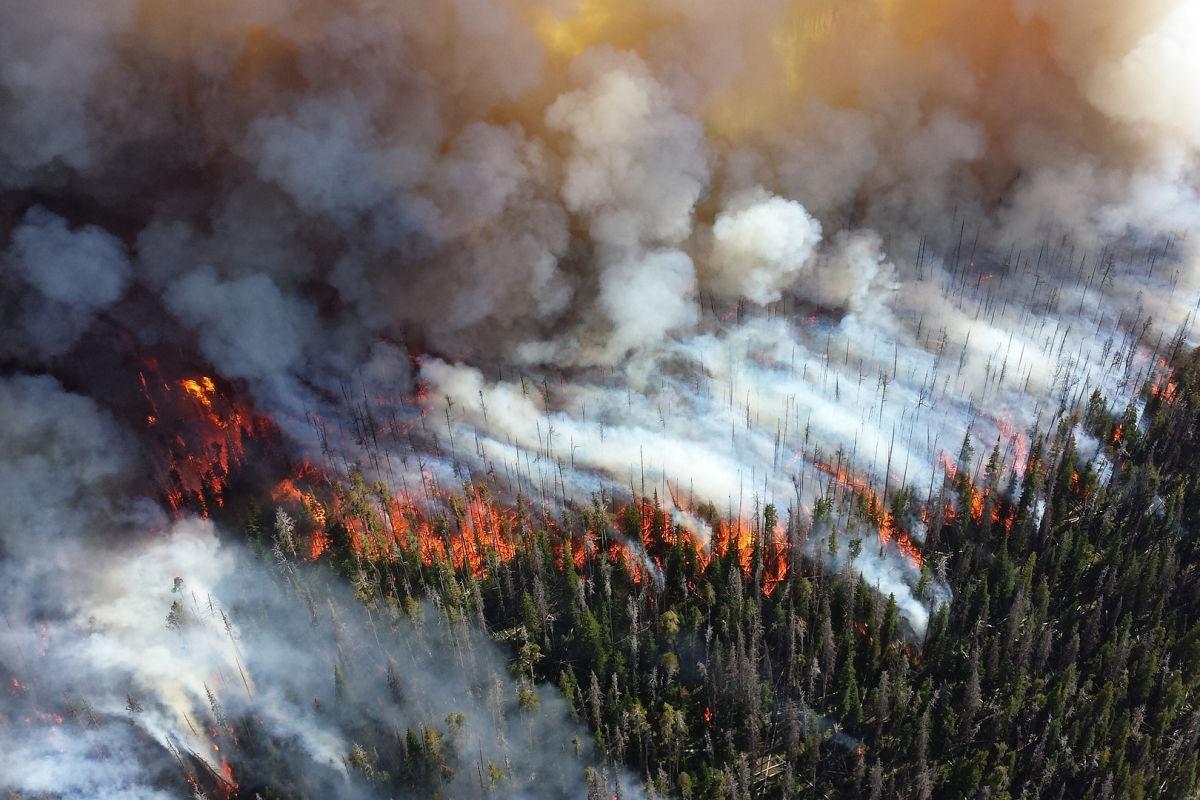 Апокалиптичные пожары в Якутии: огонь подбирается к Светлинской гидроэлектростанции