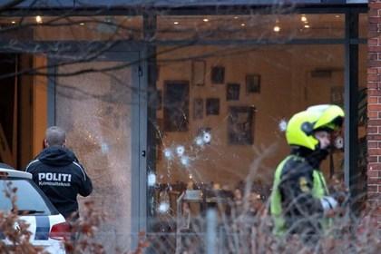 копенгаген ,происшествие, терроризм, дания, общество, трагедия