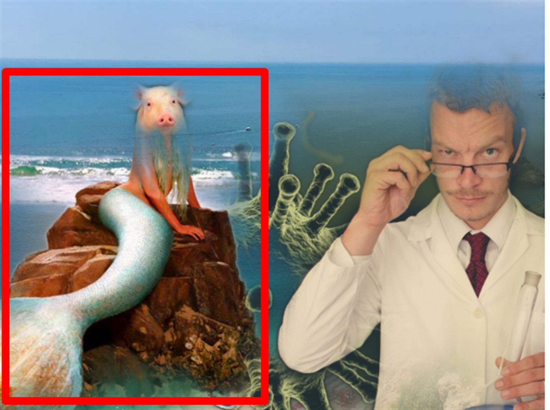 В Тихом океане нашли ʺАтлантиду чужихʺ, мутантов которых породили испытания японцев в 1932 году