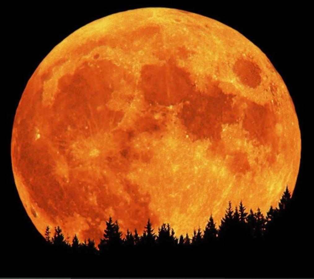 Сегодня ночью украинцы увидят Суперлуние: уникальное явление озарит ночное небо