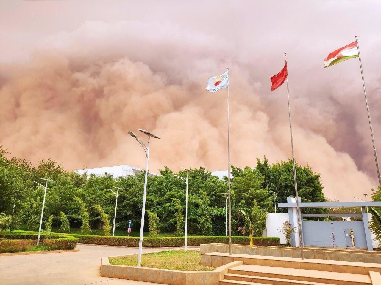 На Украину из Сахары надвигается плотное облако пыли: синоптики сообщили, какие области накроет первыми