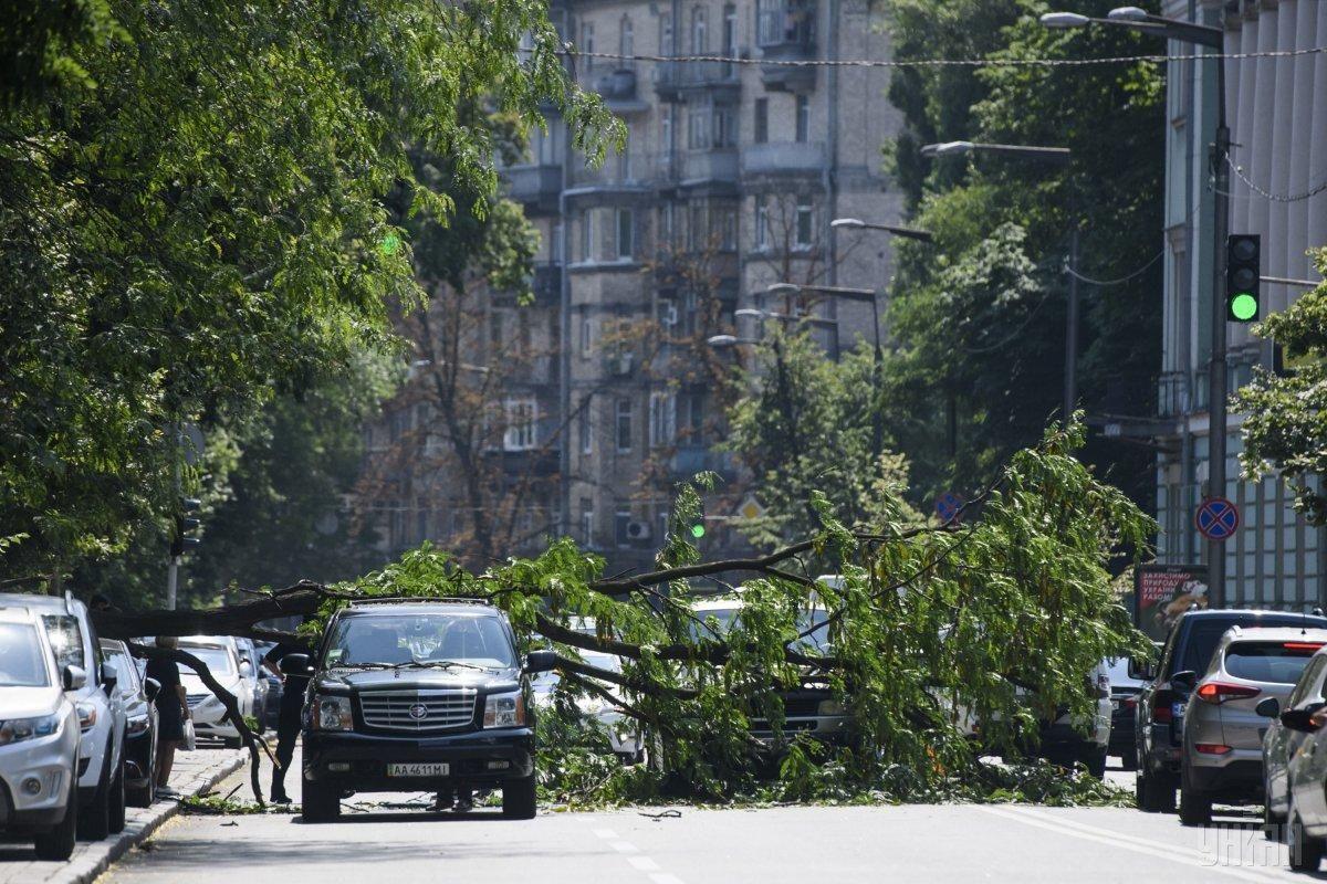 Штормовое предупреждение в Украине: Укргидрометцентр назвал регионы, где ухудшится погода