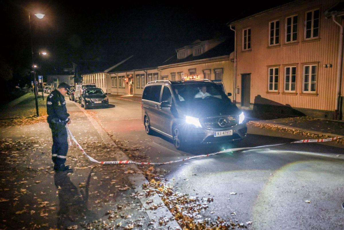 Норвежская полиция допускает версию теракта по резонансному нападению с луком и массовыми жертвами