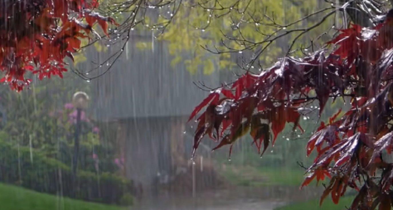 Не забудьте зонтик: Украину накроют грозовые дожди