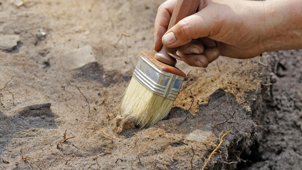На Луганщине археологи нашли загадочные захоронения племени с необычной формой черепа у детей