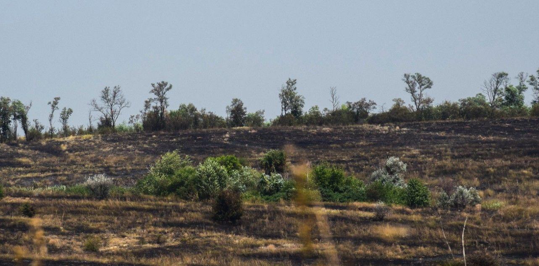 """""""Горели сами, детонировали боеприпасы"""": на Донбассе боевики случайно сожгли свои позиции"""