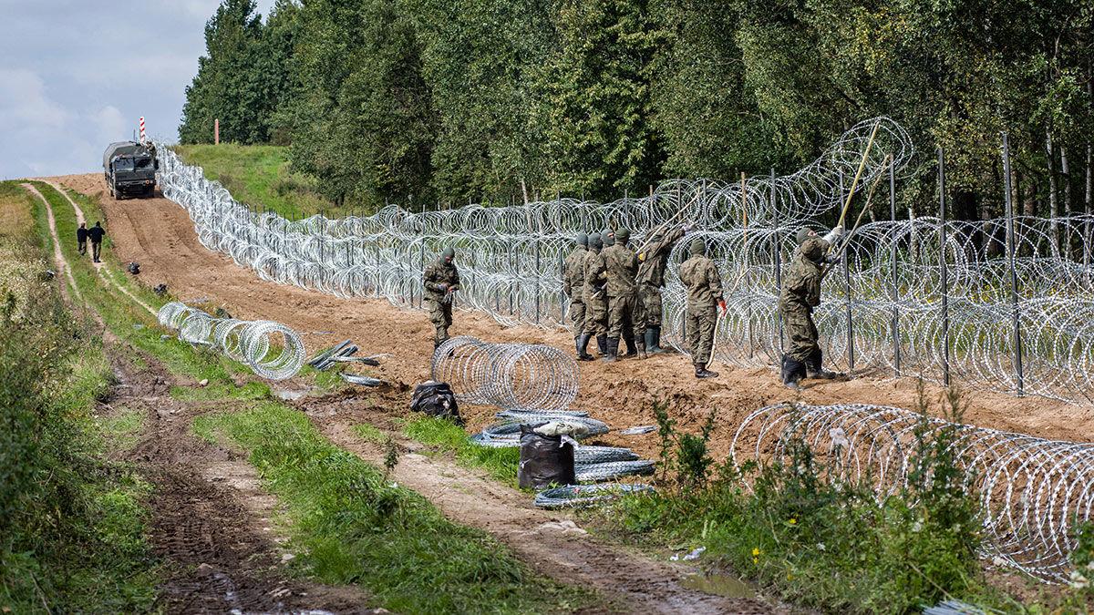 Польша намерена возвести на границе с Беларусью надежную стену с детекторами движения