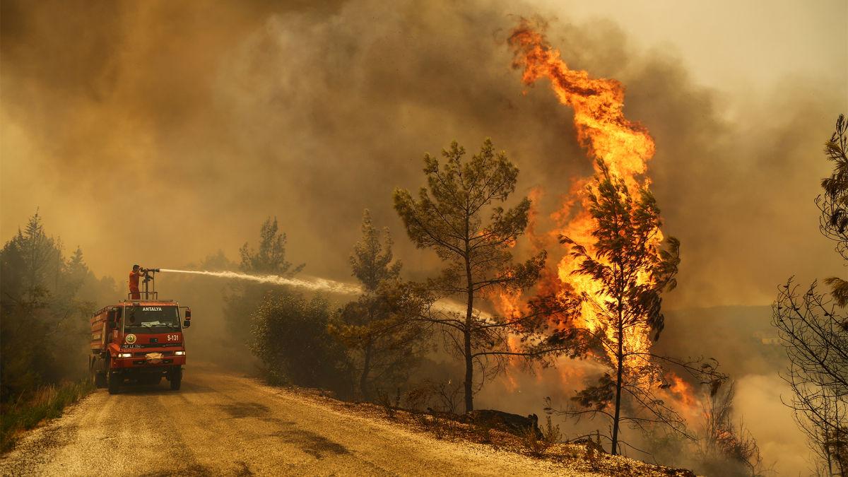 """Поджоги лесов в Турции: """"Дети огня"""" взяли на себя ответственность – Мюрид о промахе спецслужб"""