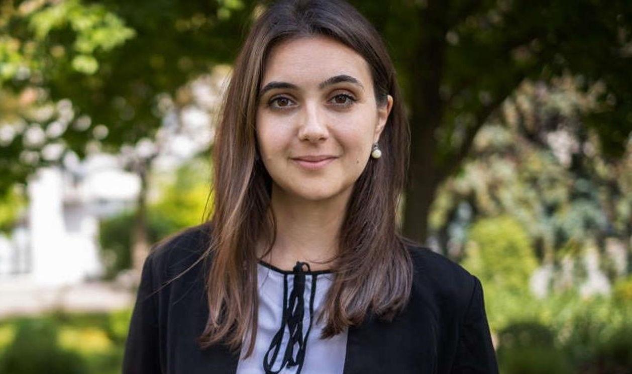 Зеленский предлагал Стерненко должность: Мендель выступила с заявлением