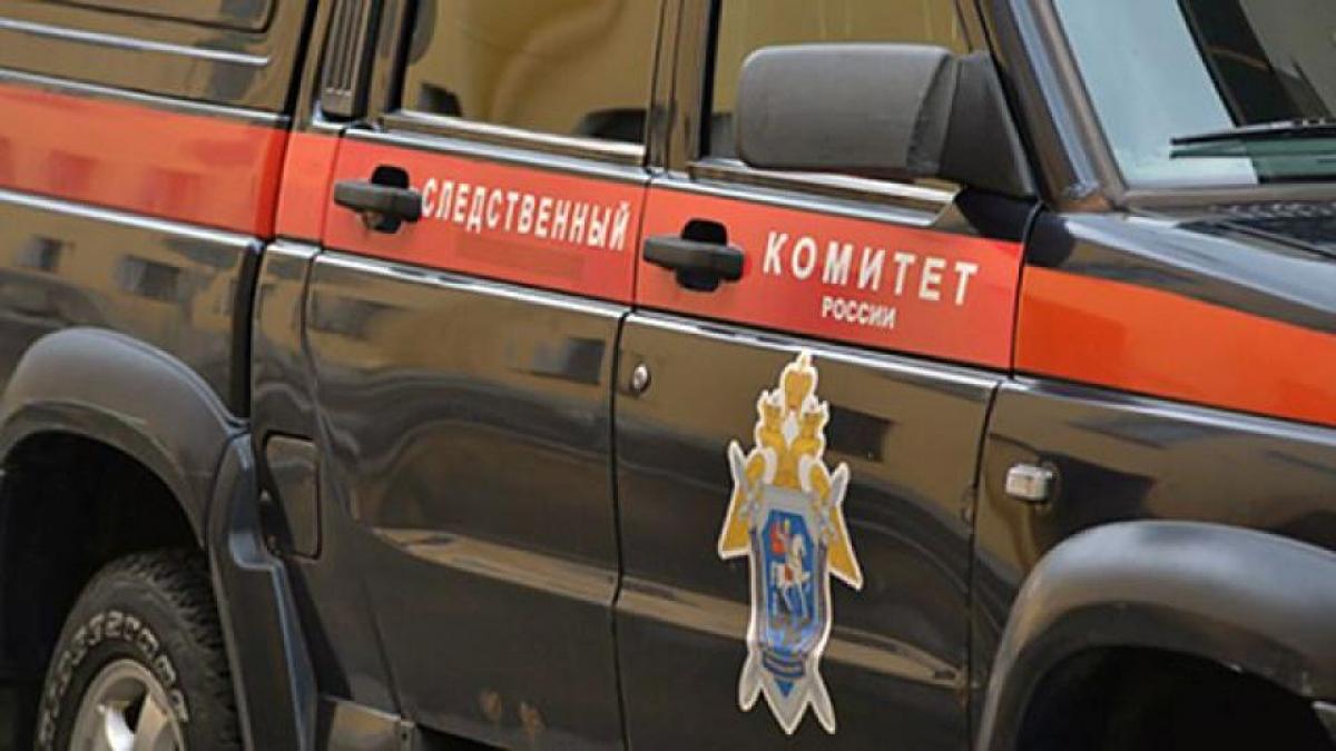 В России сын чемпионки мира и депутата Проскуряковой порубил людей мачете: много раненых