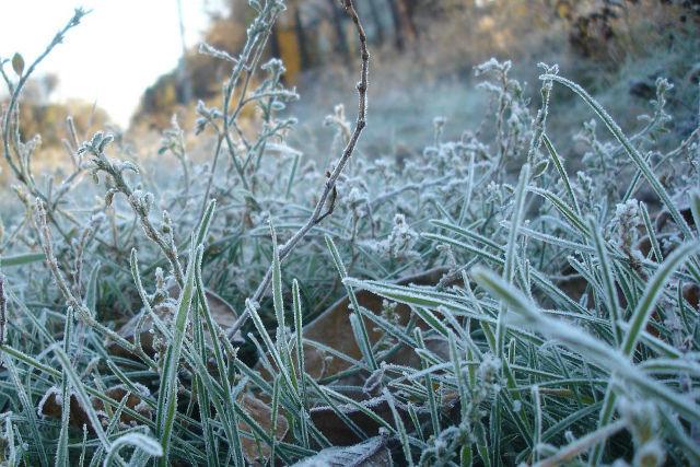 На Украину надвигаются заморозки и снег