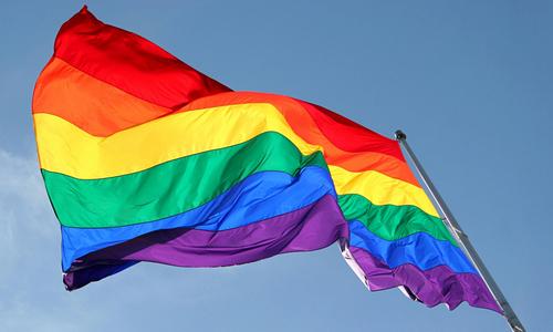 """В Госдуме на фоне сообщений о геноциде геев в Чечне """"посочувствовали"""" Европе из-за ее проблем с ЛГБТ-сообществом"""